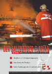 21.09.2008 Sägewerk in Vollbrand